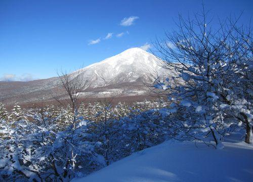 八子ガ峰から見た蓼科山 2010.1.16