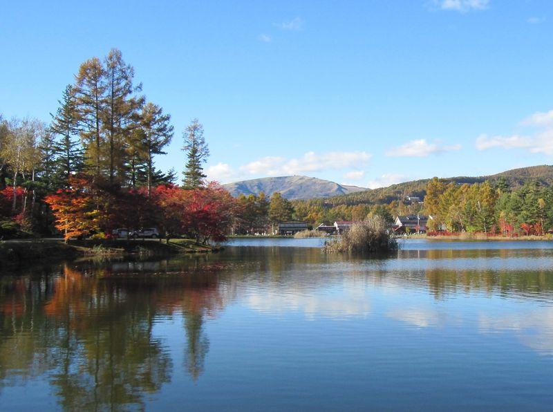蓼科湖のもみじ 2010.11.3