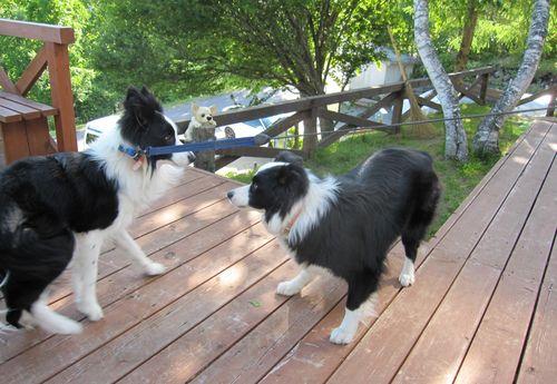 リック(右)とランディ(左) 2010.6.24