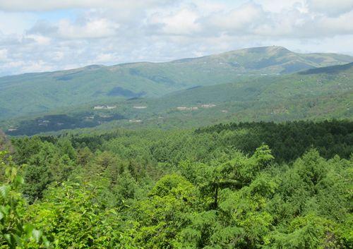 蓼科高原、向こうに見えるのは車山 2010年6月15日